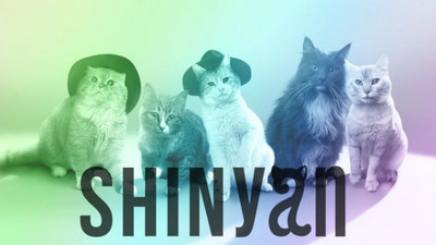 本尊哀抖太忙!日本推貓偶像「SHINyan」出道萌飯❤