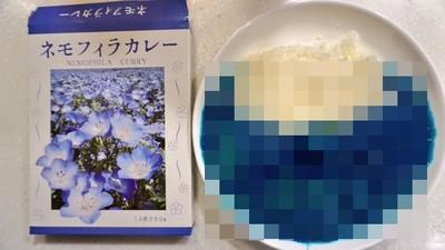 夢幻「琉璃唐草咖哩」什麼味?看外觀我忽然不想懂了..