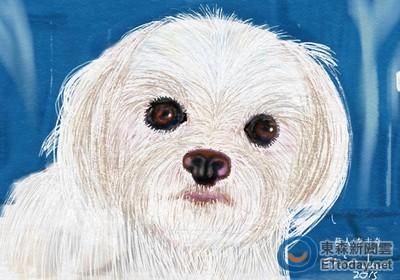 陪伴14年的馬爾濟斯走了.. 李志希用畫畫紀念「毛孩」