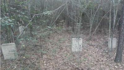 森林深處的詭異墓園,死者全在同一時期埋葬