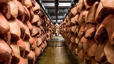 深入全球「最現代化屠宰場」,每週殺100000隻豬