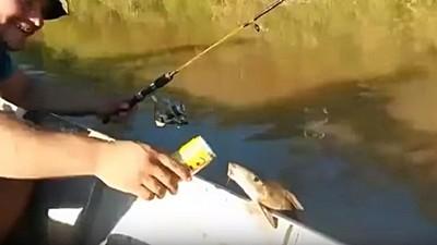 釣魚遇到魚登船,咕嚕咕嚕把我的啤酒喝光啦~