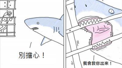 如果動物會說話..也許鯊魚咬籠子只是想救你出來