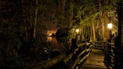 迪士尼消失的第五座公園,湖中小島到底隱藏了甚麼?