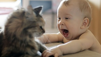 史上最窩心暖喵!被寶寶抓痛,牠回擊只「溫柔拍一下」