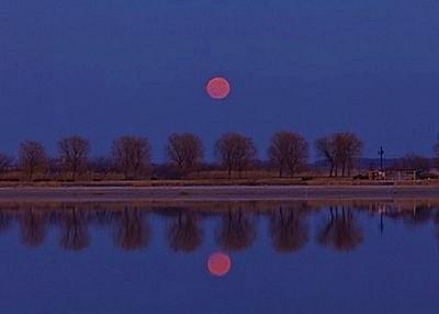 6/21迎來50年一遇「夏至滿月」,看了會帶來幸福❤