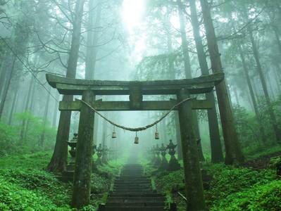 霧雨中的絕美神社,奇幻氛圍既像異次元也像吉卜力場景