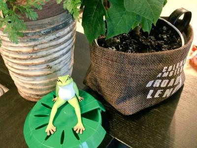 辦公室療癒小物~又帥又有用的真男人「蛙田捕太郎」