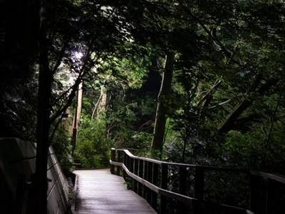 東京都內靈異8地,當年被姦屍的幼女魂如今還徘徊在...