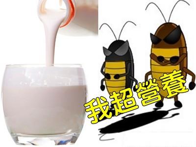喝一杯抵四杯牛奶!超營養的「人造小強奶」你要喝嗎?