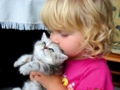 「貓額頭香水」是啥味?我想應該很濃醇香>///<