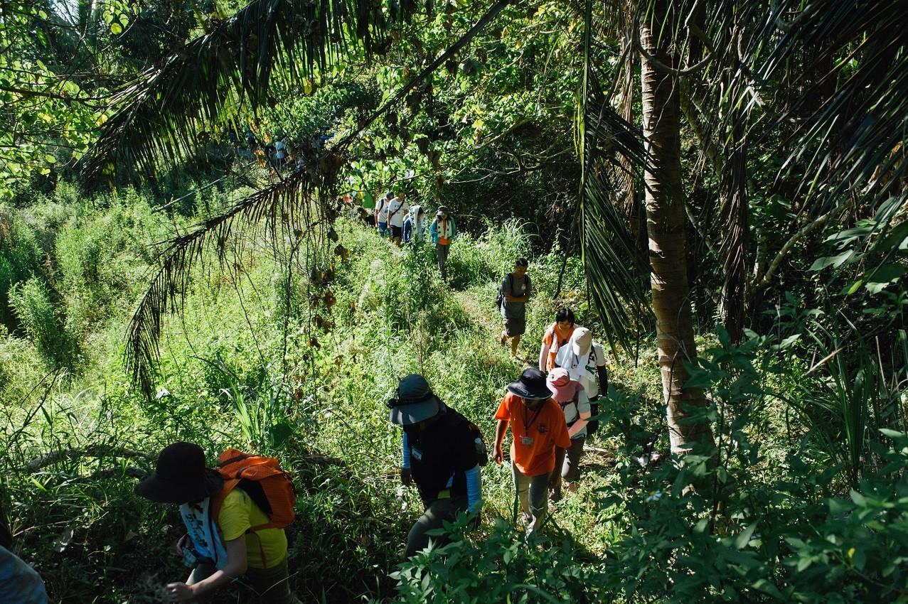 藍色部落、原始森林!官方認證「全台最美4條步道」大公開