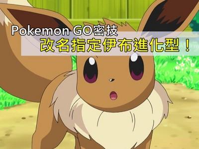 Pokémon GO密技大全!改特定名居然能指定伊布進化型