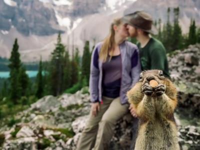 松鼠自備零食亂入訂婚照..小心拍完後被抓去三杯啊!