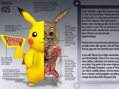寶可夢「解剖圖」大公開!原來皮卡丘沒裝發電機唷(誤