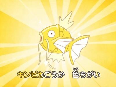 神奇寶貝為何設計一隻超廢鯉魚王?這故事有洋蔥