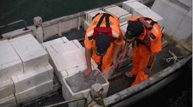 剛開放!漁船亂捕吻仔魚620公斤
