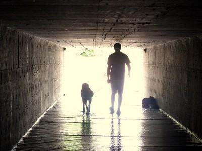 隱約傳來的狗叫聲,循線想起遺忘多年的往事
