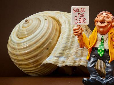 「難怪你賣不出去!」掌握3點銷售原則菜鳥也能變神人