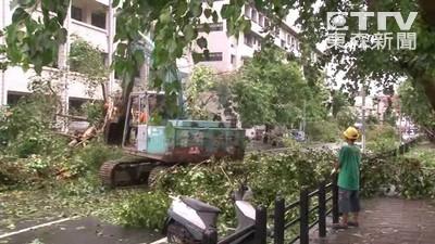 強颱過境!高雄清出近520噸垃圾