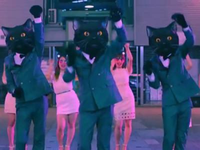 左抓抓右抓抓~宅急便40周年慶黑貓舞,看完一直馮加塔
