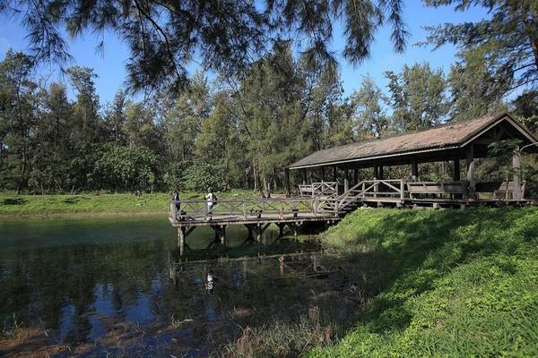 台東森林公園琵琶湖(圖/取自台東縣政府官網)