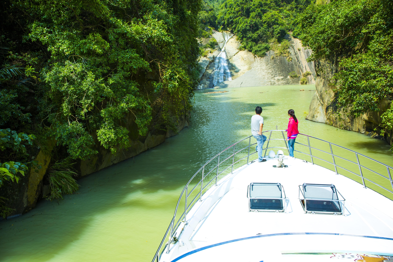 45年來水位最高!曾文水庫一片綠色汪洋「水漾森林」新秘境