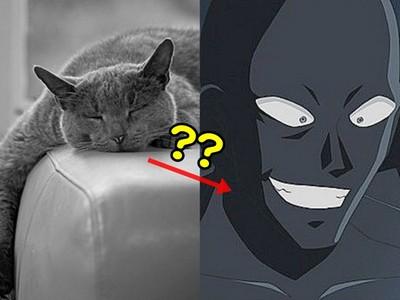 貓咪過世如何處理?鄉民這神回我還以為在看柯南呢