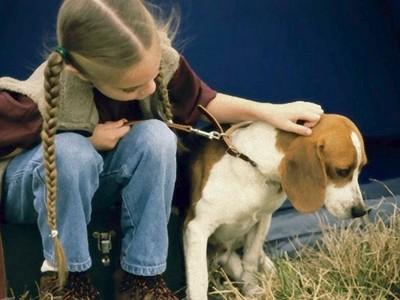 寵物過世為何小孩會特別傷心?因為牠們曾是最好的家人