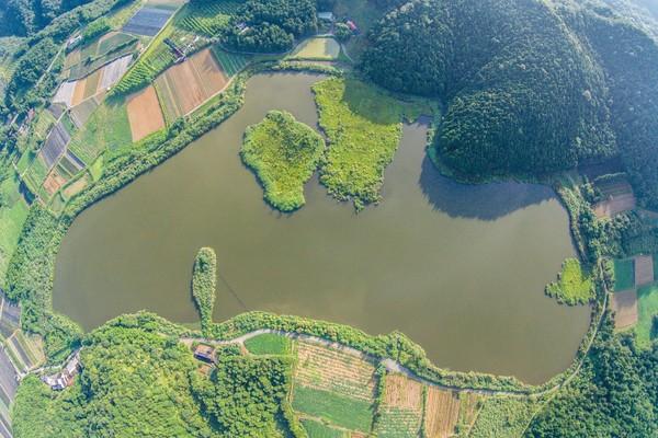 真的動了!全球唯二500年奇景 宜蘭雙連埤「浮島」飄移200公尺