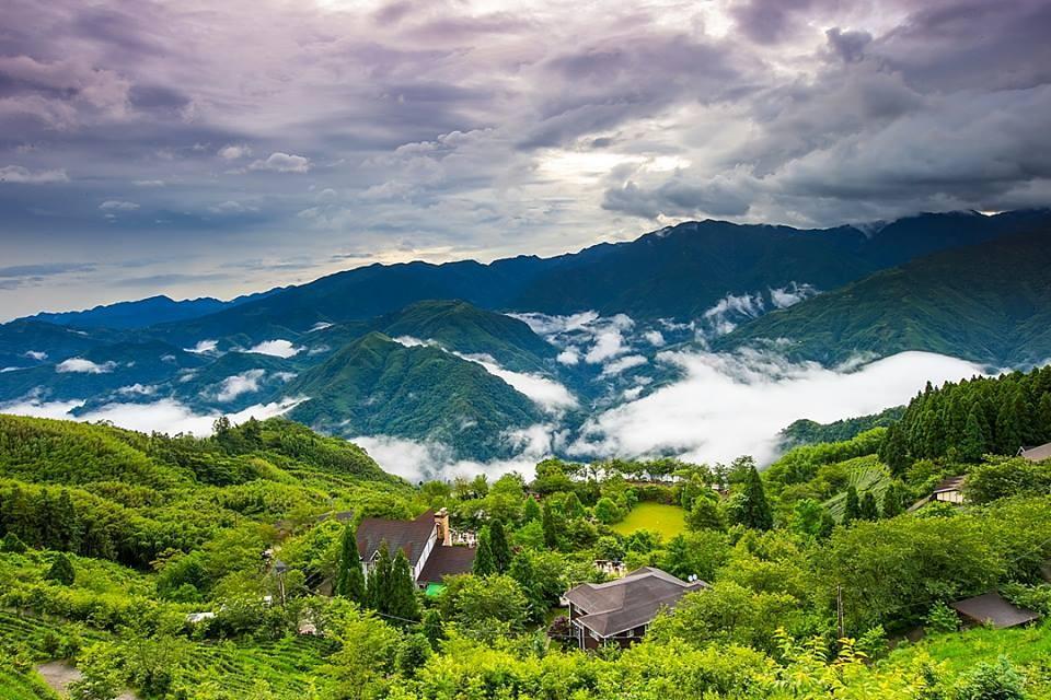 簡直是仙境!全台三間被雲海包圍的高山農場
