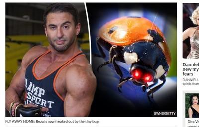 被甲蟲咬一口 猛男染敗血症險死
