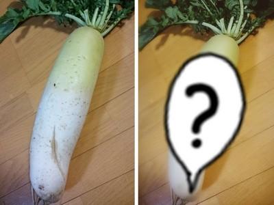 美肌功能終極測試!坑坑疤疤的白蘿蔔竟變這樣...