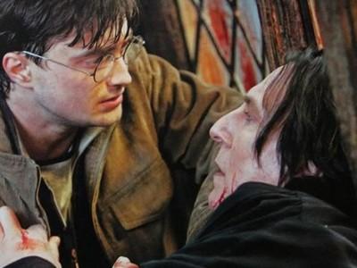 石內卜對哈利說的第一句話..解碼後令人心碎不捨