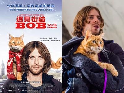 得獎公布/《遇見街貓BOB》真實改編  BOB本尊躍上大銀幕