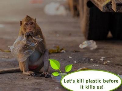 塑膠危機即將解除?印度人發明「可以吃」的塑膠袋