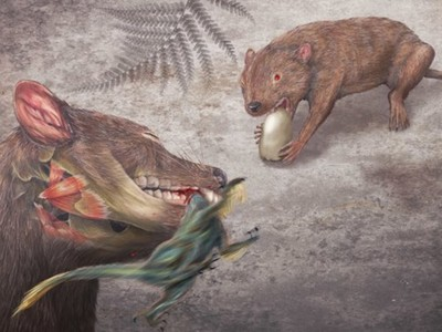 連恐龍都被牠獵殺!遠古「強顎老鼠」身型迷你卻橫行白堊紀