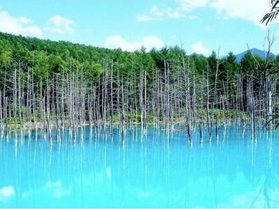 森林中的蒂芬妮藍!連Mac都淪陷的北海道青池