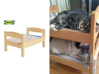 貓奴衝IKEA掃貨!兒童玩具床熱銷變「毛小孩的溫柔鄉」