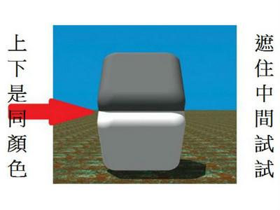 這張圖上下是同顏色?把中間遮住就「會變」