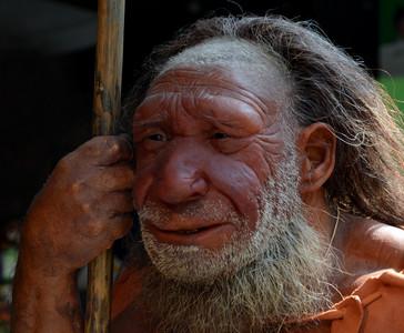 一根鳥骨透露4萬年前的「美學」
