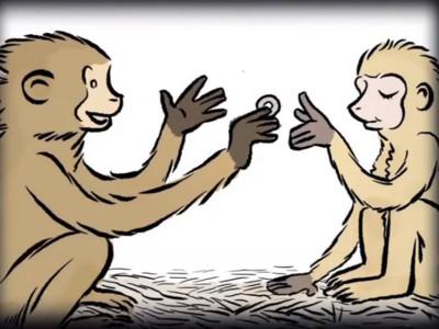 貨幣實驗「教猴子用錢」最後全腐化..搶銀行、買春都來