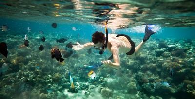 菜鳥教練害潛水學員喪身海底!