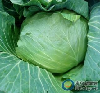 多吃花椰菜、高麗菜防腸癌 專家教烹調秘訣留住營養