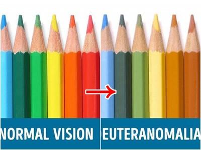 色盲看到的世界是?他們只是雙眼自備了「天然濾鏡」