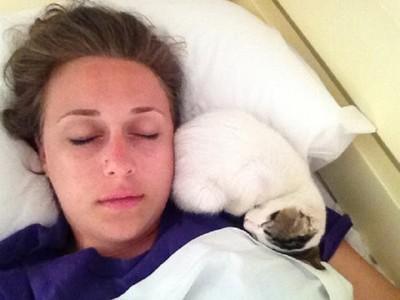 住在旅館的喵~房客只要開門就會到床上窩一團「陪睡」