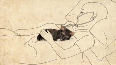 借一隻貓咪陪伴生命最後兩天 癌末少女讓牠留下代替自己