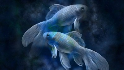 藏在優柔寡斷底下的溫柔,解析雙魚座內心戲的秘密