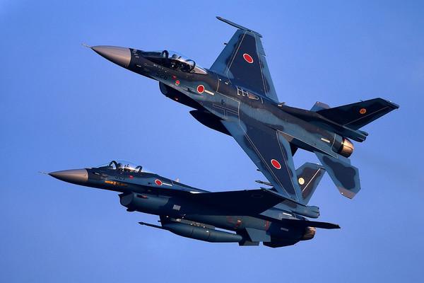 日本自衛隊F-2A戰鬥機。(圖/翻攝自日本自衛隊官網)