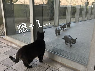 日美術館展示貓咪雕像,喵皇隔玻璃癡望:好想加入...